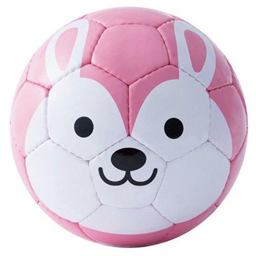 FOOTBALL ZOO - 日本專業兒童足球-Rabbit兔子