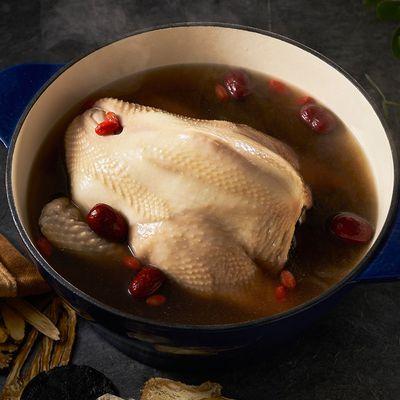 十全養生雞湯