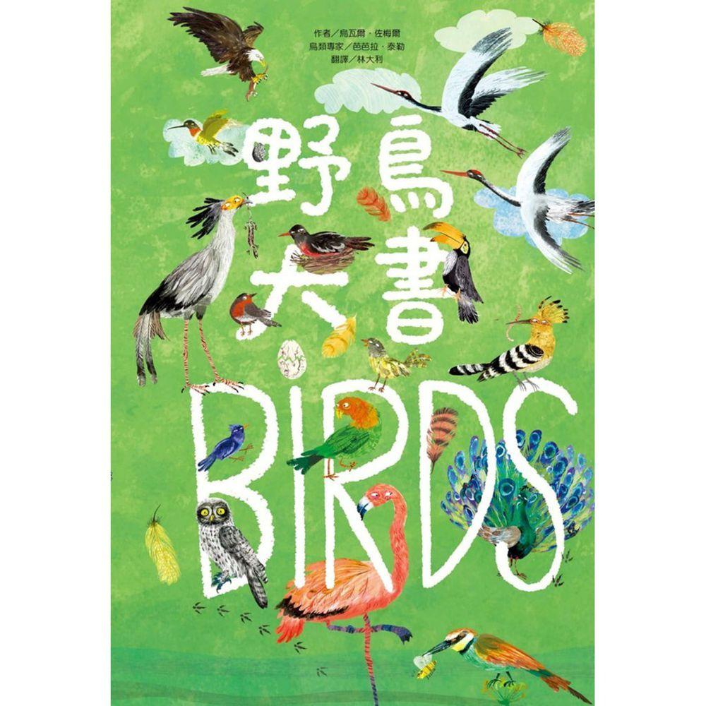 野鳥大書BIRDS