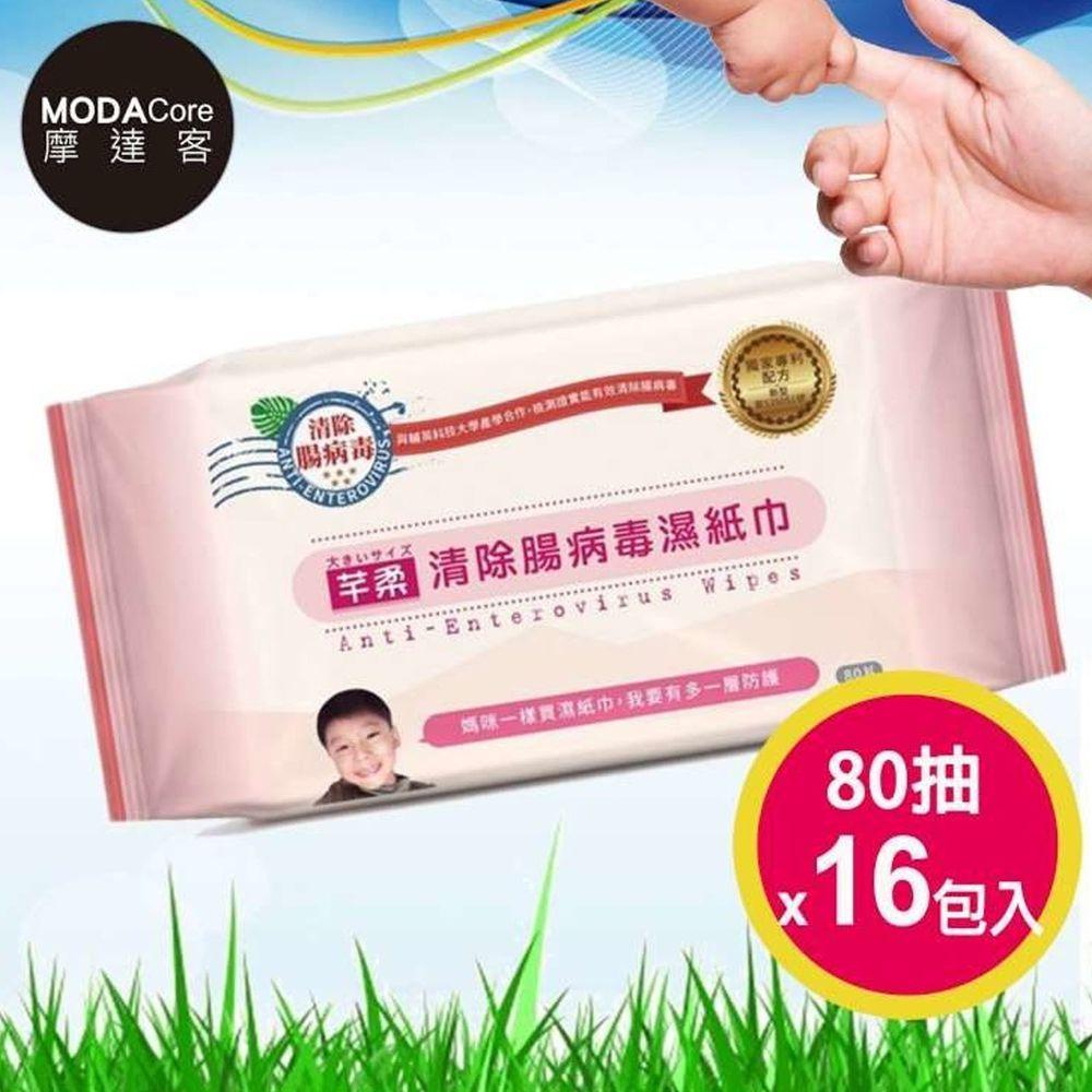 芊柔 - 清除腸病毒濕紙巾-(80抽家庭號)*16包