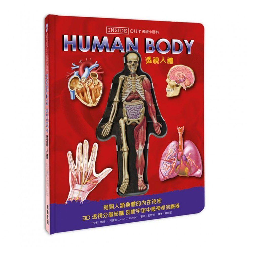 透視小百科:透視人體