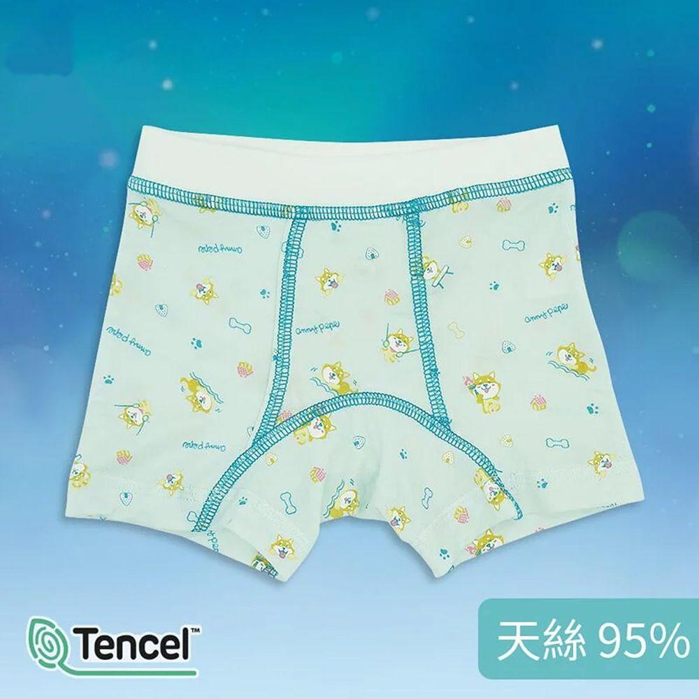 Annypepe - 男童95%天絲柴犬四角褲-藍綠 (160)