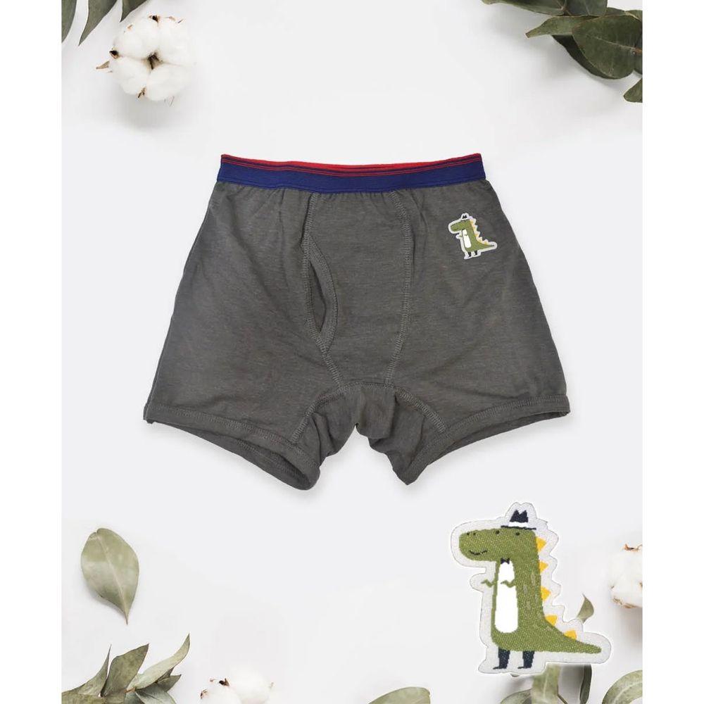 貝柔 Peilou - 天絲棉舒膚平衡童男平口褲-貼布繡-鱷魚-灰