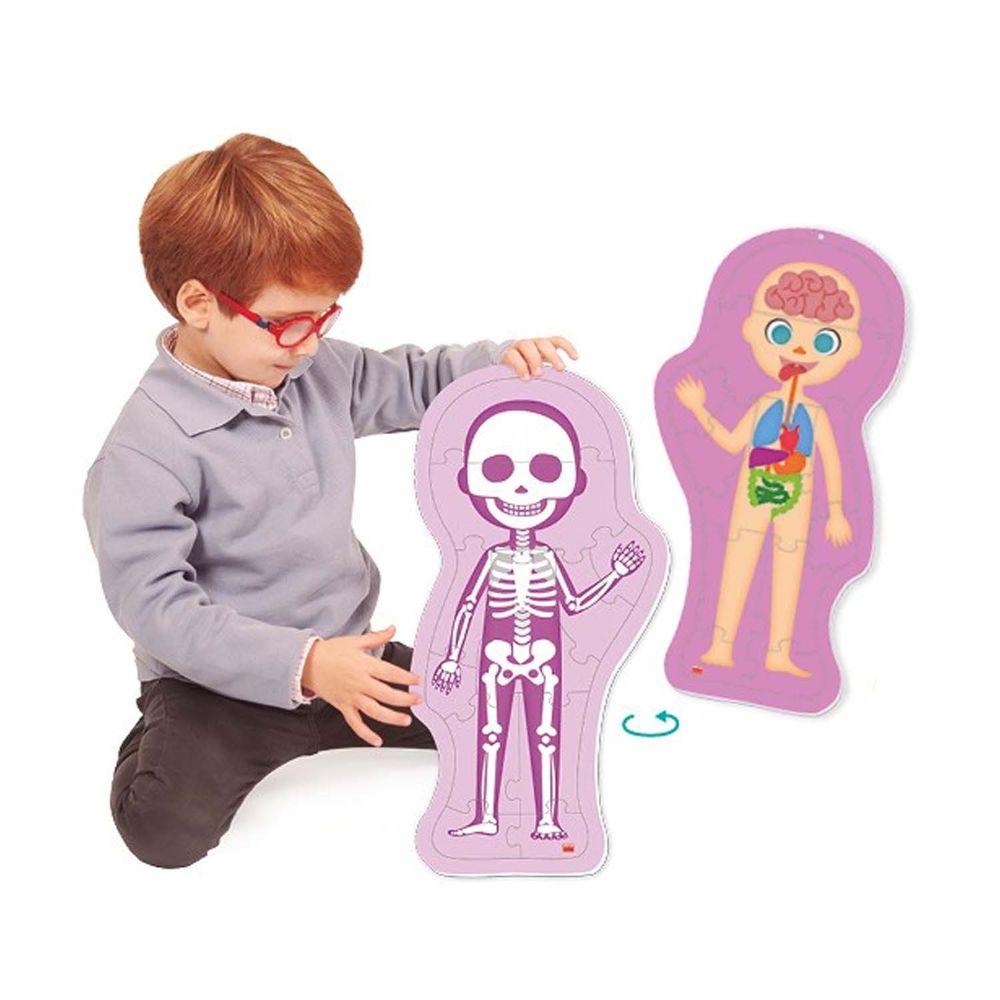 西班牙Akros - [新品]人體構造 (可洗式軟拼圖)