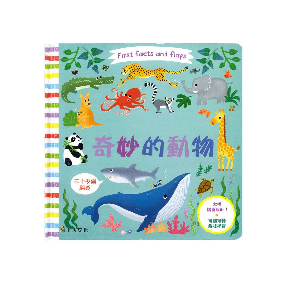 First Fact and Flaps-奇妙的動物