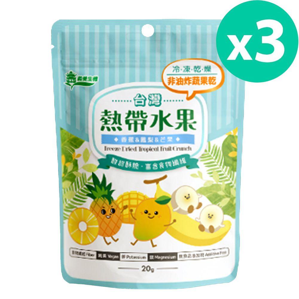 義美生機 - 台灣熱帶水果-20g/袋*3入