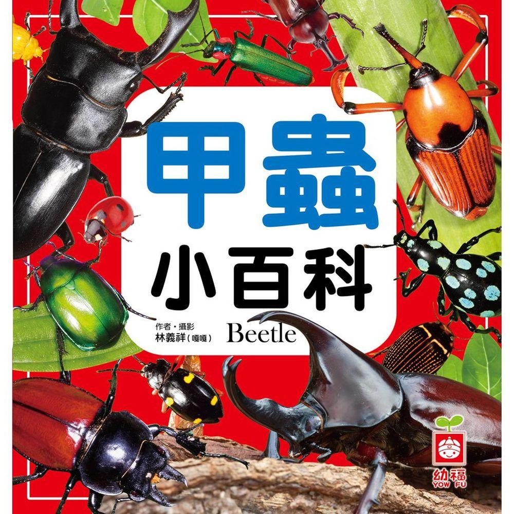 甲蟲小百科(全新小百科 正方形)