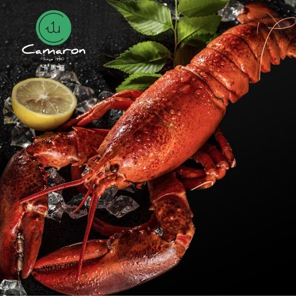 Camaron卡馬龍 - 嚴選-生凍加拿大波士頓龍蝦(非真空)