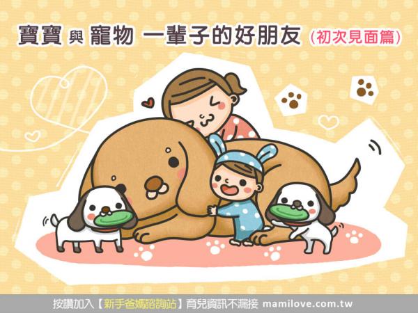 寶寶與寵物 一輩子的好朋友 (初次見面篇)
