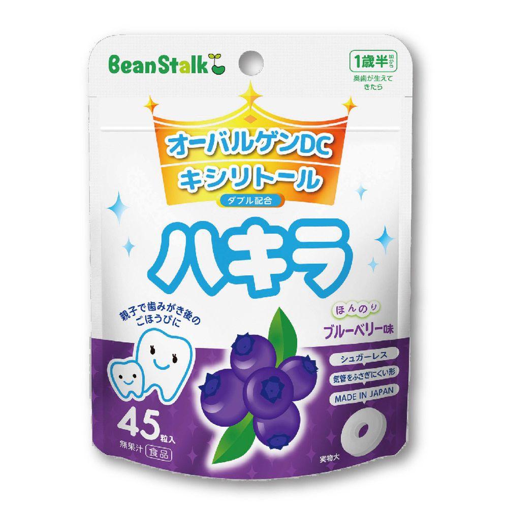 SNOW 雪印 - 雪印口中清涼糖錠(藍莓味)-45顆/包