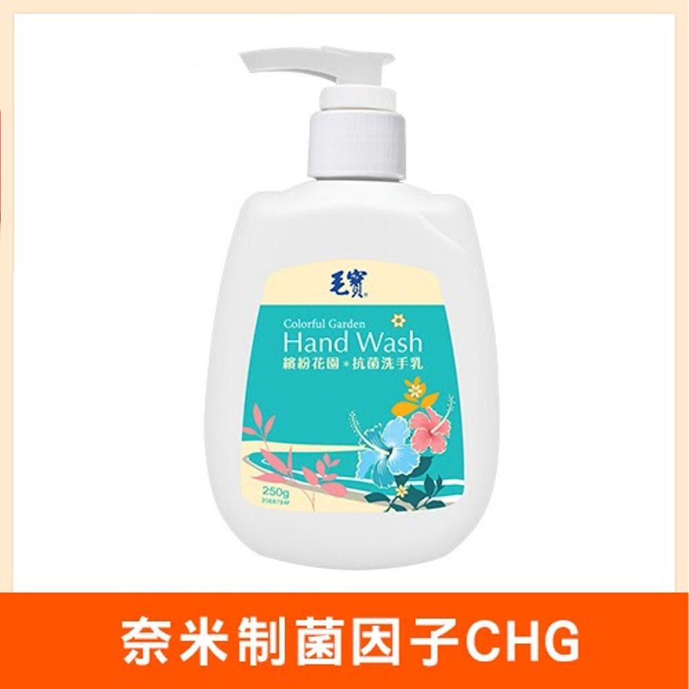 毛寶 - 繽紛花園抗菌洗手乳-250g