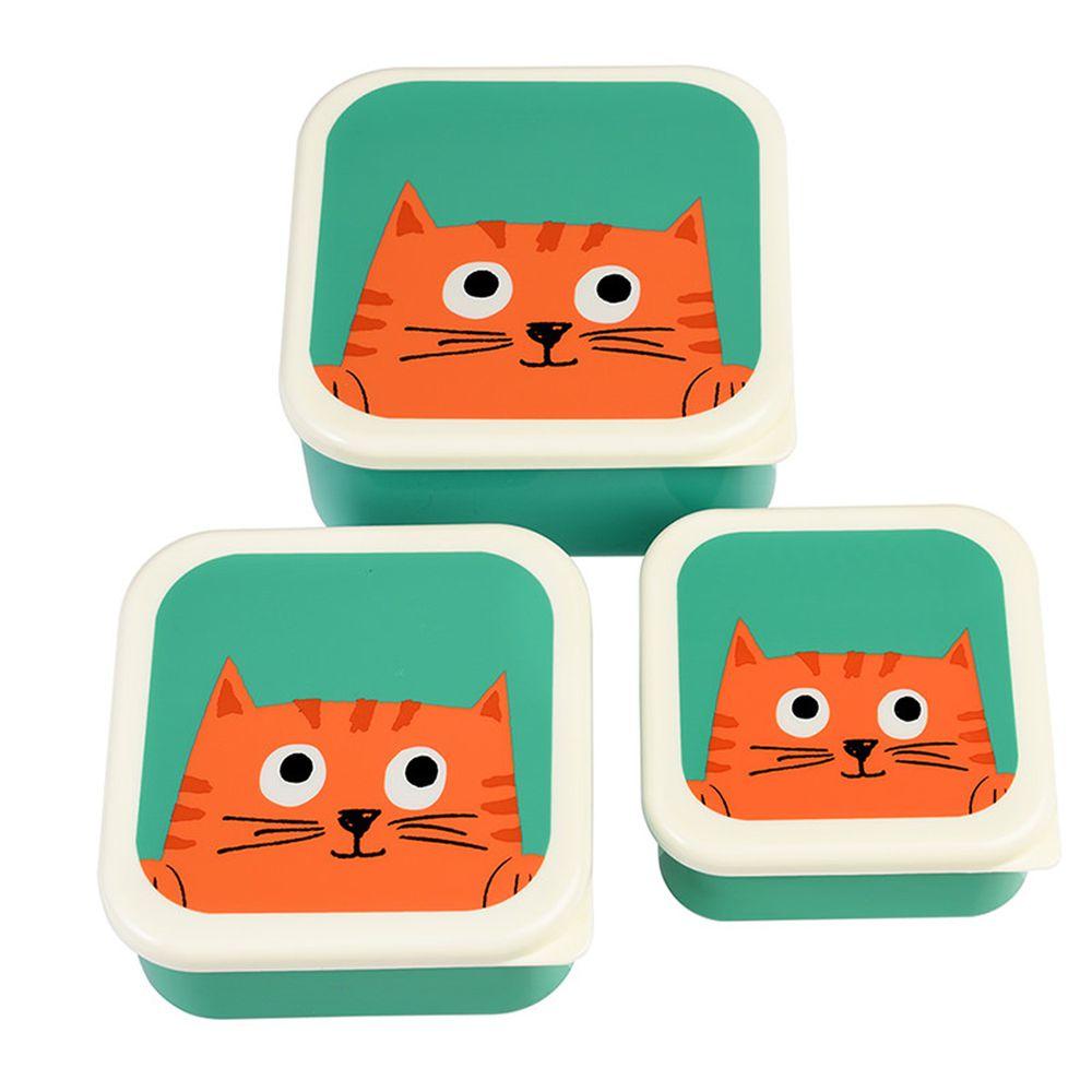 英國 Rex London - 餐盒/零食盒3入組-大眼橘貓