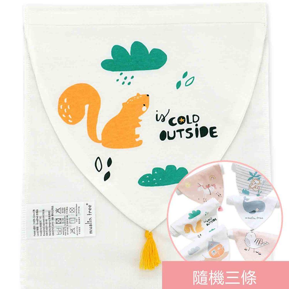 荷蘭 Muslintree - 春夏寶寶吸汗墊背巾-4條入-快樂松鼠+隨機3條