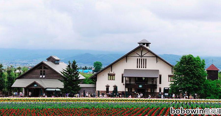 【日本北海道之旅 】Day2 Part2 富良野富田農場